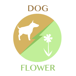 dog-flower