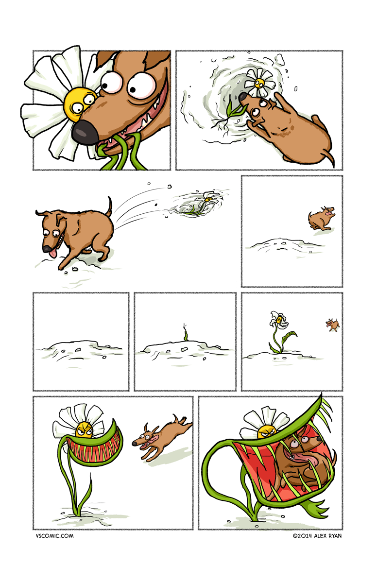 dog-vs-flower-2