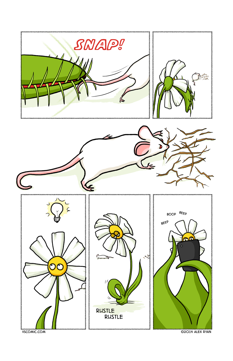 flower-vs-mouse-2