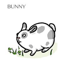 bunny-sm