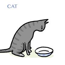cat-sm
