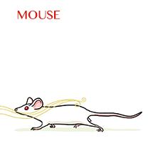 mouse-sm