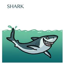 shark-sm