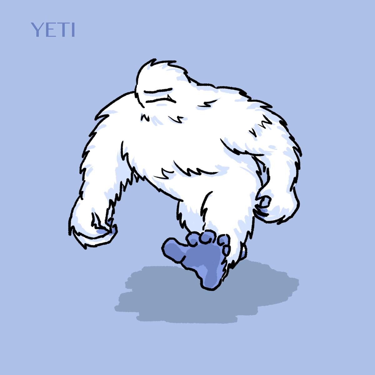 yeti images - usseek.com