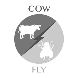 cow-fly