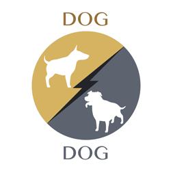 dog-dog