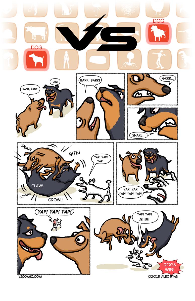 dog-vs-dog