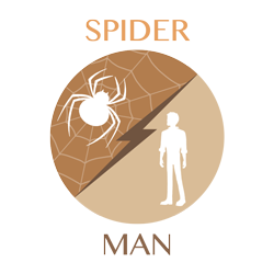 spider vs man icon