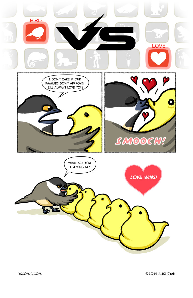 bird-vs-love