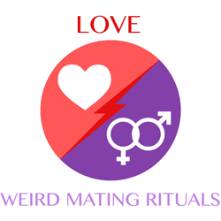 love-weirdmatingrituals