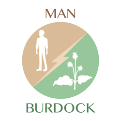 man-burdock