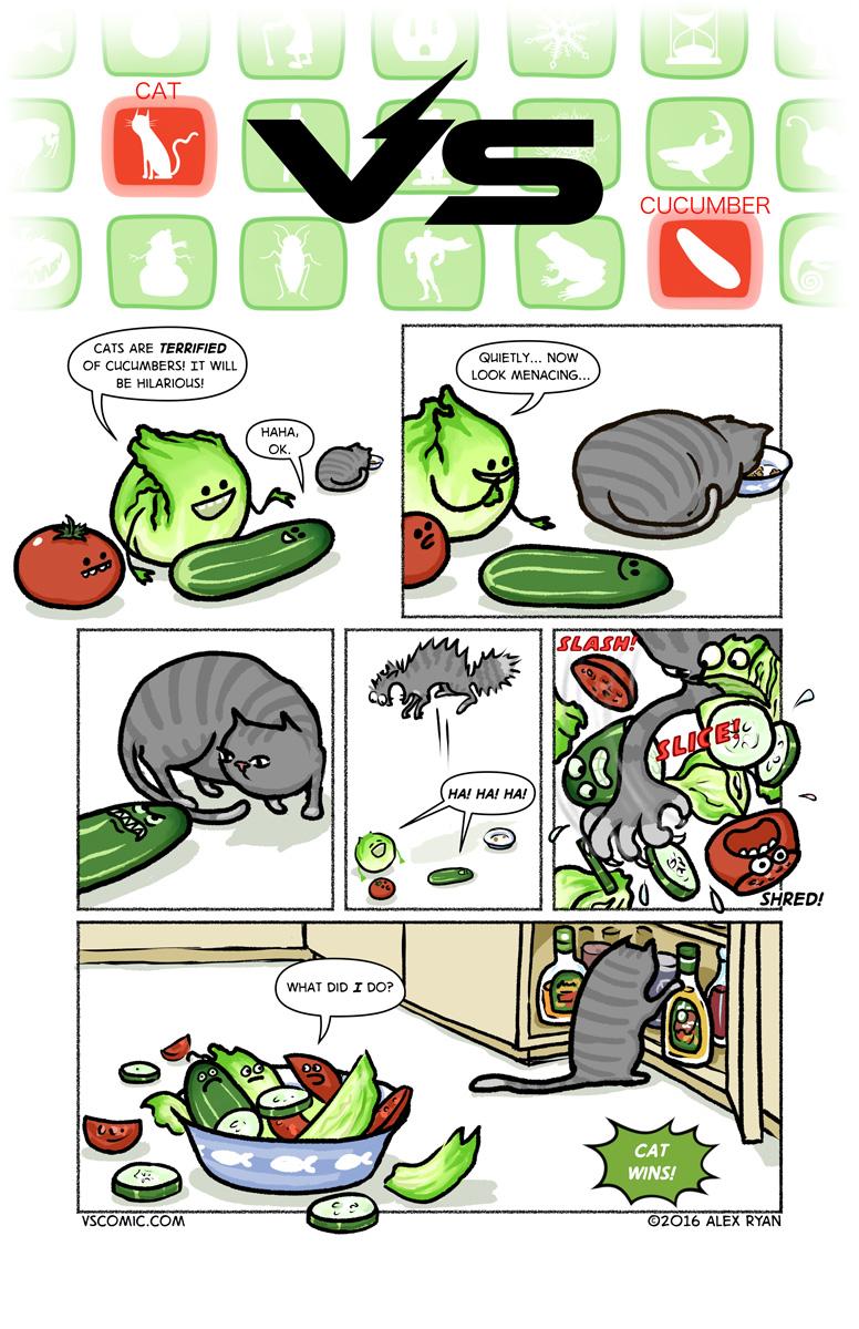 cat-vs-cucumber